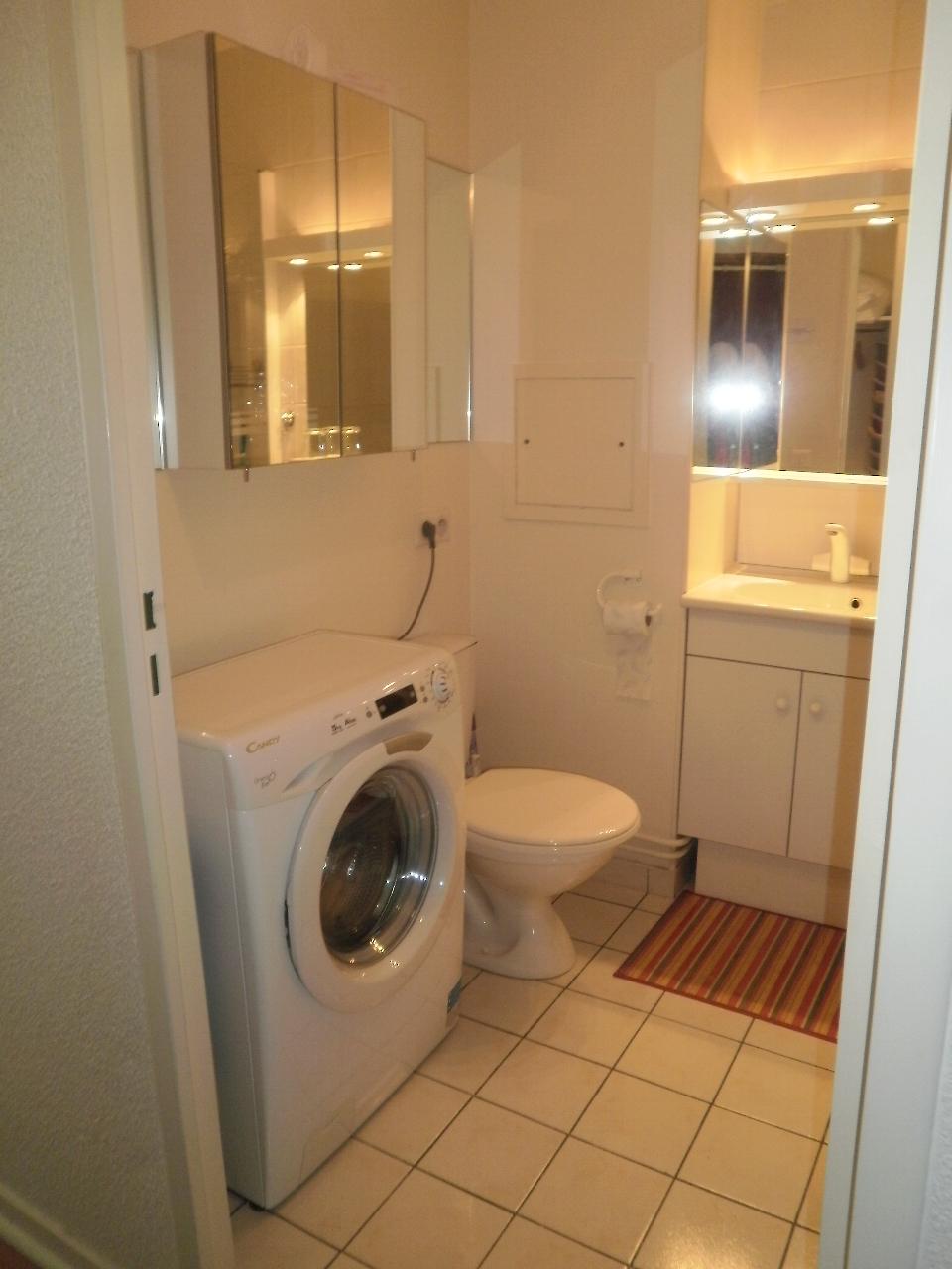 Salle d'eau + lave-linge